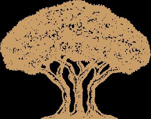 Akov rakija logo